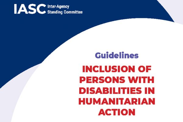 Cover of the IASC guidelines manual